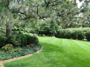 lawn and brick edging