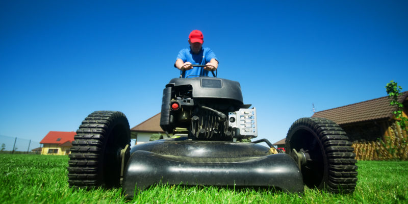 Autumn Lawn Treatment Checklist for Milwaukee