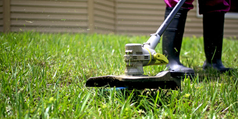 How Winter Lawn Care Services Can Protect Your Landscaping