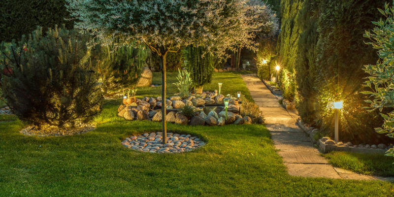 The Best Landscape Lighting Ideas for Your Backyard Oasis