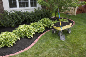 pretty landscaped lawn with sustainable design and mulch