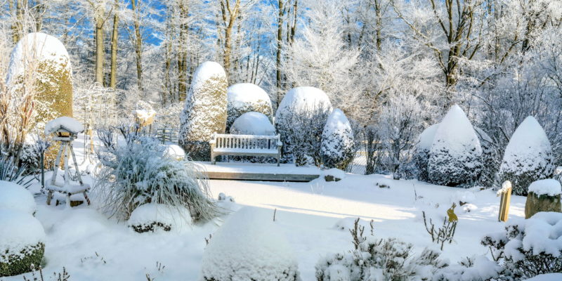 5 Tips for Winterizing Gardens Against the Milwaukee Chill