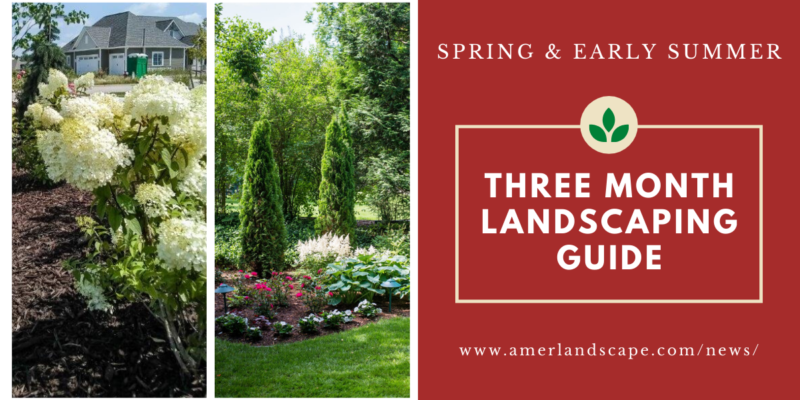 Three Month Landscaping Guide