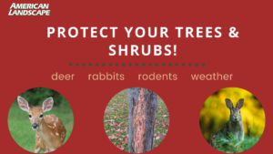 large protect your trees & shrubs banner