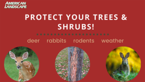 protect your trees & shrubs banner